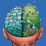 brain-left-right